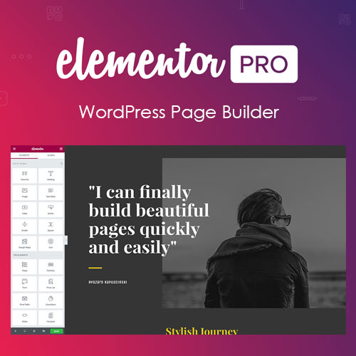 Elementor PRO WordPress Page Builder 1